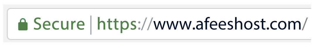 website with ssl certificate url